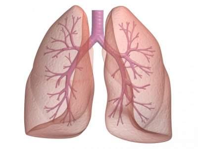 Медики дали простые советы для сохранения здоровых легких