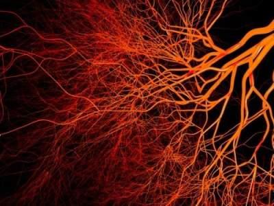 Тревожные симптомы, указывающие на проблемы с кровообращением
