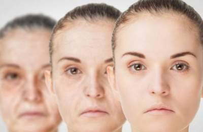 Медики назвали секреты долголетия
