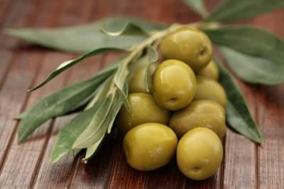 Оливки продемонстрировали эффективность против рака