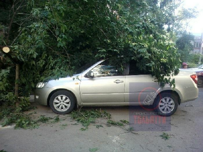В Тольятти дерево упало на 4 автомобиля
