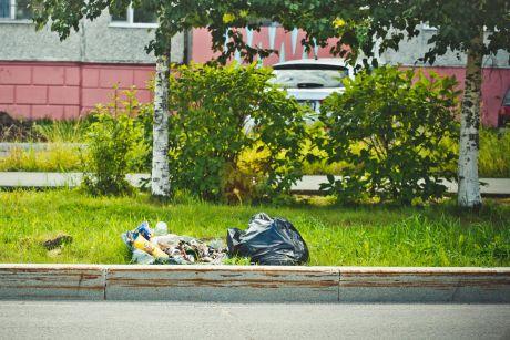 Проект «ДУМАть и решать», выпуск III. Куда будем вывозить мусор? // ВИДЕО
