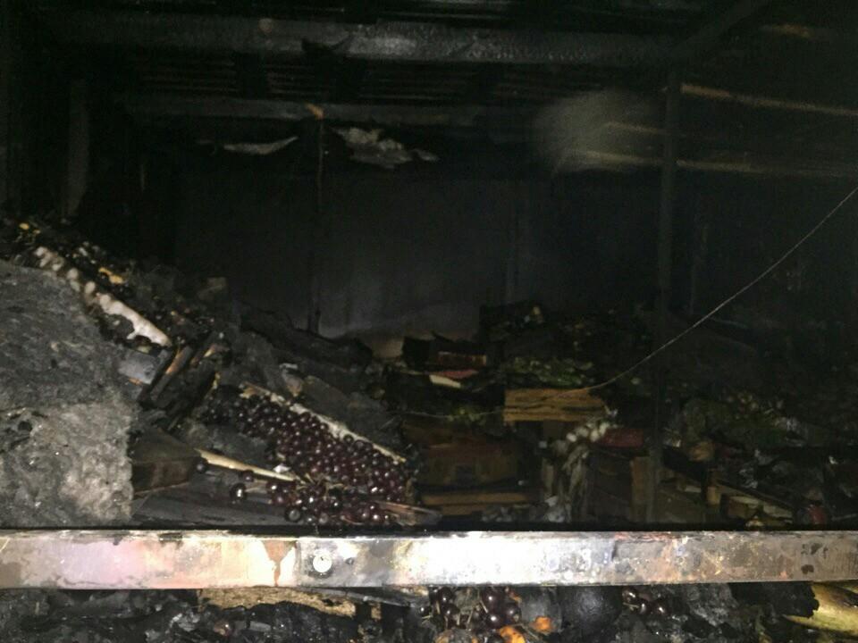 В Тольятти у торгового центра сгорела овощная палатка с выручкой и документами