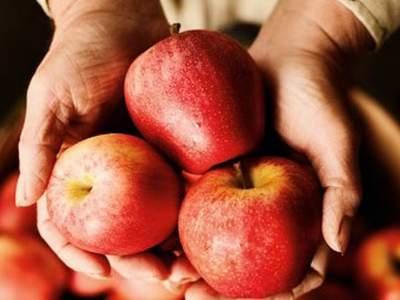 Врачи назвали полезное для здоровья свойство яблочной кожуры