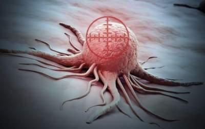 Медики предложили новый способ лечения рака