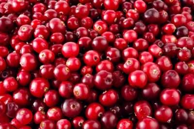Названа ягода, которая улучшает здоровье почек