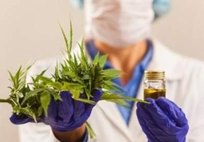 Немецкие врачи открыли положительный эффект марихуаны