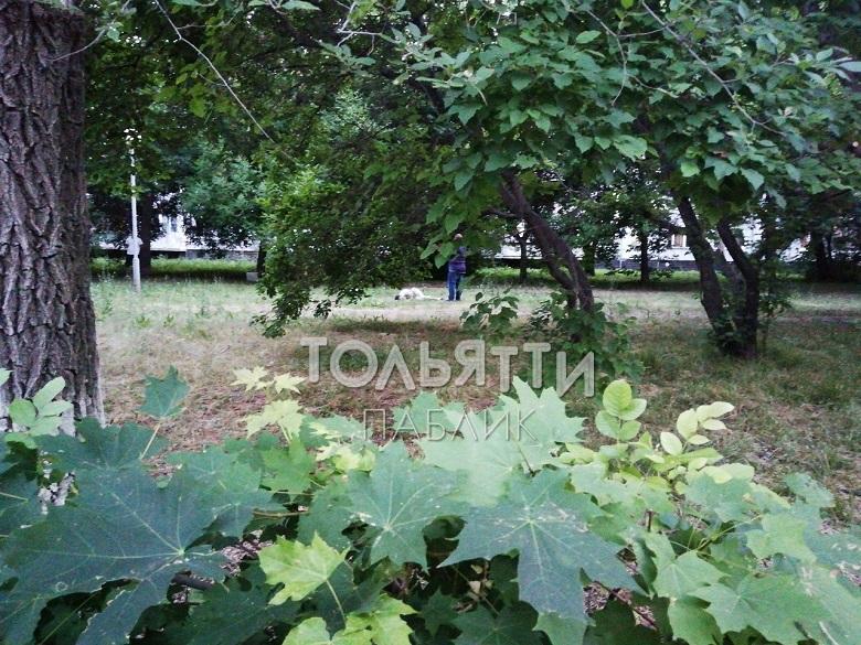 В Тольятти на улице мужчина зарезал своего друга