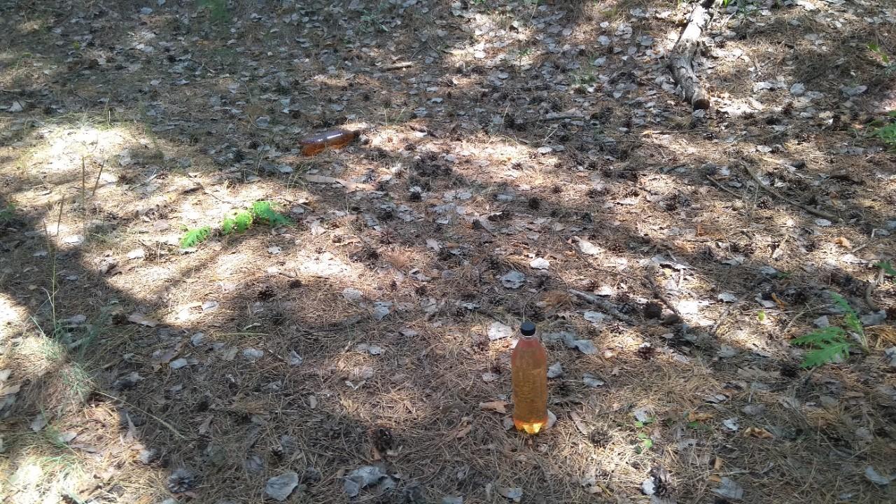 В тольяттинском лесу велопатруль обнаружил заготовленные емкости с бензином