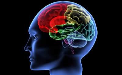 Эти физические упражнения активируют работу мозга