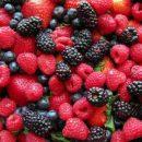 Названы самые полезные для здоровья ягоды