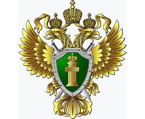 Прокуратура Тольятти защитила жилищные права ребенка-сироты