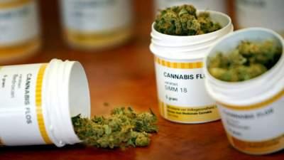 В Литве легализуют марихуану в медицинских целях