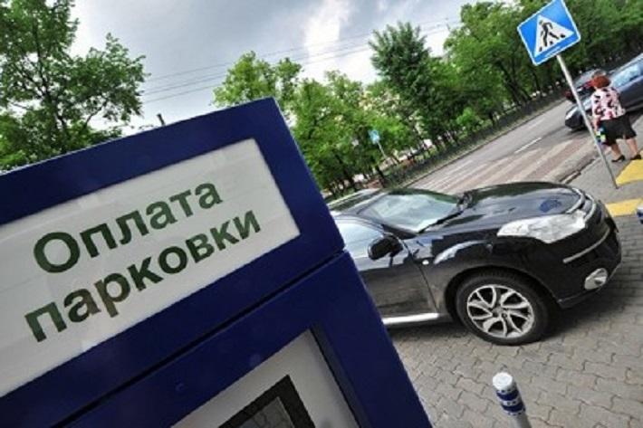 В Самарской области хотят запретить платные парковки у школ, медучреждений, спортобъектов и организаций культуры