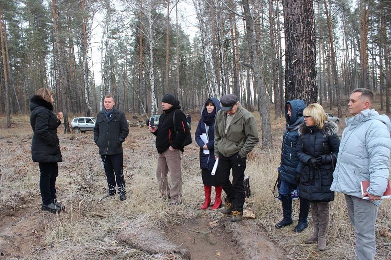 Седьмой созыв Думы проверил работу подрядчиков, занимавшихся восстановлением тольяттинского леса