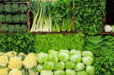 Врачи рассказали, какие овощи полезны для печени